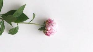 Miss You Poem by Alexandra Vasiliu