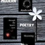 POETRY BOOKS by ALEXANDRA VASILIU