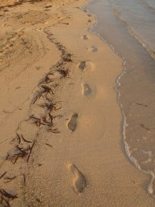 The footprints of poetry