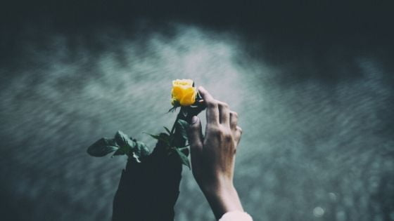 The Flower Of Hope - Inspirational Poem by Alexandra Vasiliu, Author of BLOOMING
