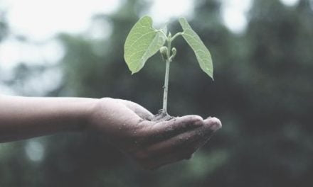 Plant Hope In Your Heart