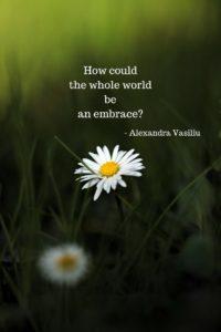 Embrace Poem Alexandra Vasiliu