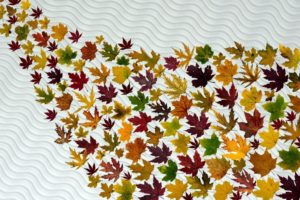 Leaves Illustration