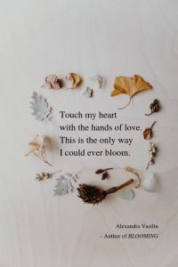 Touch My Heart - Love Poem by Alexandra Vasiliu, Author of Blooming
