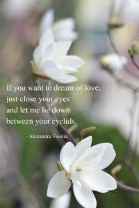 Dream Poem Alexandra Vasiliu