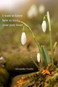 Poetry Alexandra Vasiliu