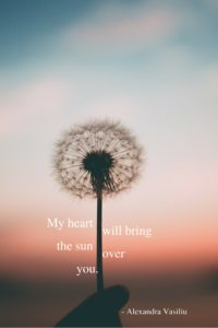 Hope Poem Alexandra Vasiliu