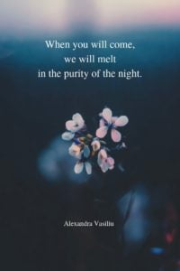 Where Falling Stars Live Poem Alexandra Vasiliu