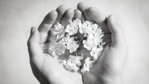 Healing Takes Time - Poem by Alexandra Vasiliu, Author of BLOOMING and HEALING WORDS