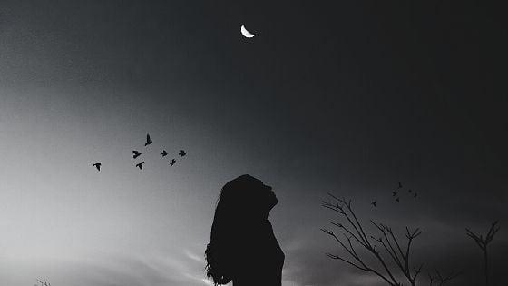 Let The Moon Teach You