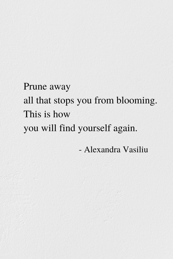 You Will Find Yourself Again - Poem by Alexandra Vasiliu, Author of BLOOMING and Healing Words