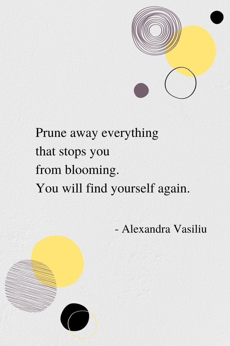 You Will Find Yourself Again - An Inspiring Poem by Alexandra Vasiliu, Author of BLOOMING, BE MY MOON, and HEALING WORDS